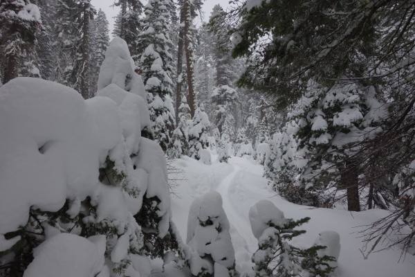 The snowpack is growing between Highway 89 and the Pacific Crest.