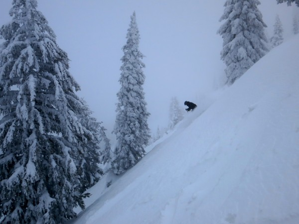 Shred uncrowded deep powder?  Check!