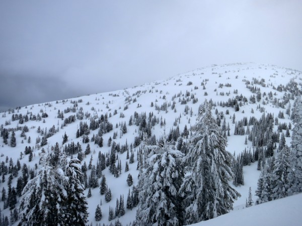 Perfect glades accessed from the Dreamcatcher lift.