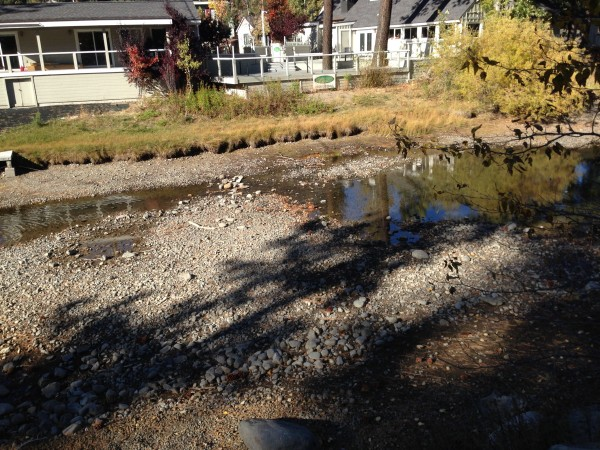 Truckee River is merely a trickle just past the dam in Tahoe City.