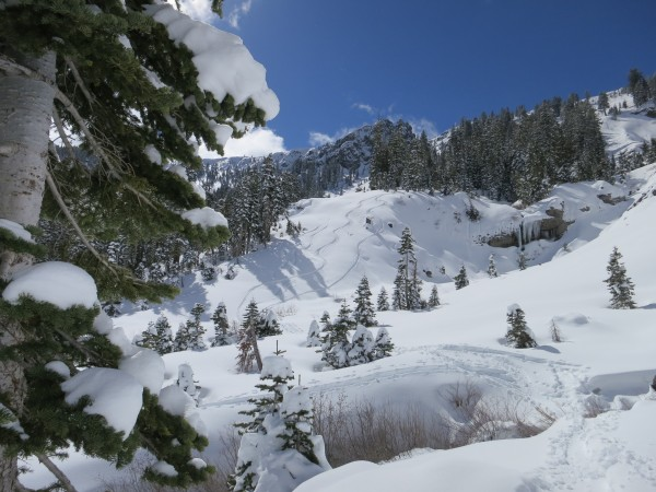 Perfect conditions in the backcountry on March 3.