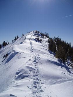 Relay Peak