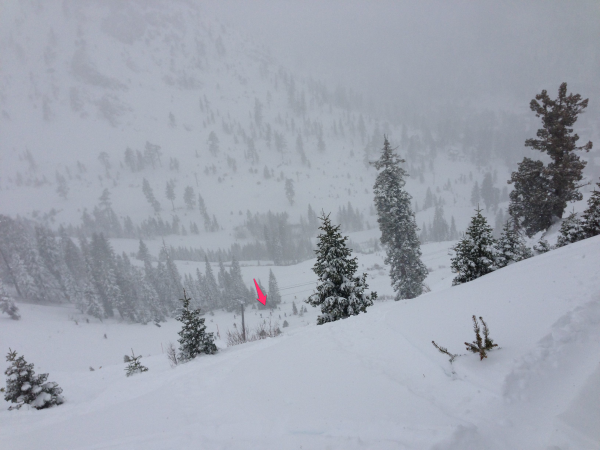 Skiers Search for Avalanche Victims